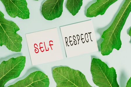 Handwriting text writing Self Respect. Conceptual photo Pride and confidence in oneself Stand up for yourself