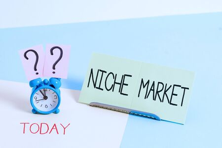 Handwriting text writing Niche Market. Conceptual photo Subset of the market on which specific product is focused