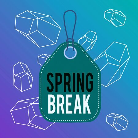 Word writing text Spring Break. Business photo showcasing Vacation period at school and universities during spring Empty tag blank space colorful background label rectangle attached string Reklamní fotografie