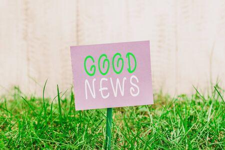 Écrit remarque montrant de bonnes nouvelles. Concept d'entreprise pour quelqu'un ou quelque chose de positif, encourageant, édifiant ou souhaitable Papier ordinaire attaché au bâton et placé dans la terre herbeuse