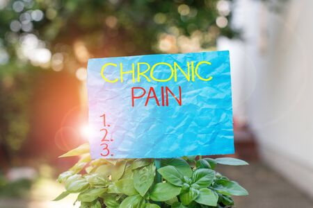 Conceptual hand writing showing Chronic Pain. Concept meaning pain that is ongoing and usually lasts longer than six months Plain paper attached to stick and placed in the grassy land Banco de Imagens