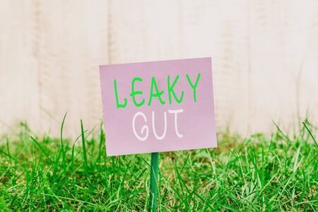 Writing note showing Leaky Gut. Business concept for A condition in which the lining of small intestine is damaged Plain paper attached to stick and placed in the grassy land Imagens