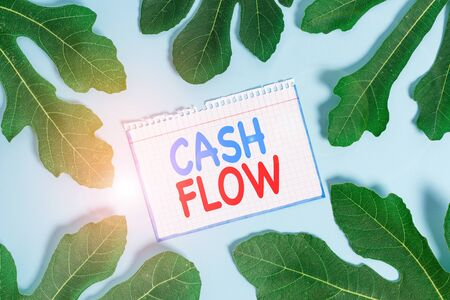 Text sign showing Cash Flow. Business photo text Movement of the money in and out affecting the liquidity Stock fotó