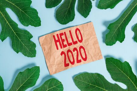 Word writing text Hello 2020. Business photo showcasing expression or gesture of greeting answering the telephone
