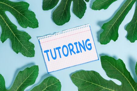 Text sign showing Tutoring. Business photo text An act of a demonstrating employed to administer knowledge to someone
