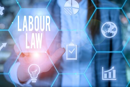 Text sign showing Labour Law. Business photo text Rules implemented by the state between employers and employee Female human wear formal work suit presenting presentation use smart device