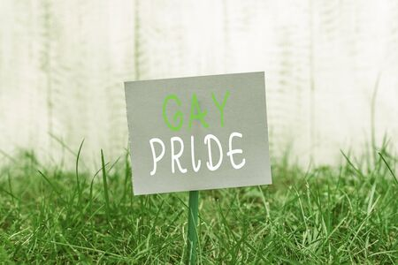 Writing note showing Gay Pride. Business concept for Dignity of an idividual that belongs to either a analysis or woanalysis Plain paper attached to stick and placed in the grassy land Imagens