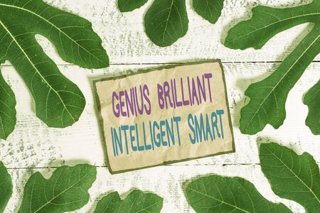 Writing note showing Genius Brilliant Intelligent Smart. Business concept for Clever Bright Knowledge Intelligence