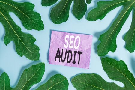 Word writing text Seo Audit. Business photo showcasing Search Engine Optimization validating and verifying process
