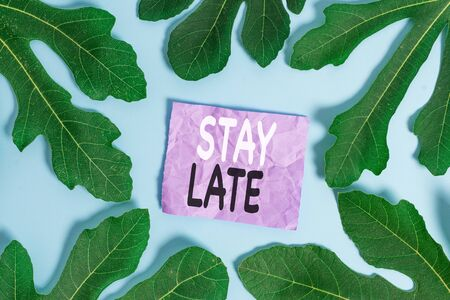 Word writing text Stay Late. Business photo showcasing A routine in which a demonstrating goes to somewhere out of time 스톡 콘텐츠