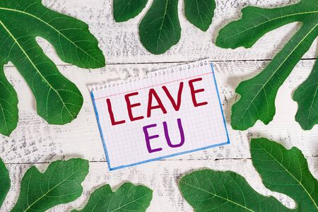 Text sign showing Leave Eu. Business photo showcasing An act of a demonstrating to leave a country that belongs to Europe Stock fotó