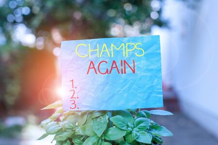 Conceptual hand writing showing Champs Again. Concept meaning refers to winner or someone who excels and enjoys victories Plain paper attached to stick and placed in the grassy land Banco de Imagens