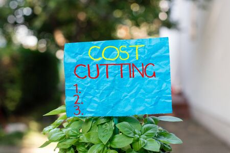 Conceptual hand writing showing Cost Cutting. Concept meaning actions taken to reduce the amount that is spent on a service Plain paper attached to stick and placed in the grassy land