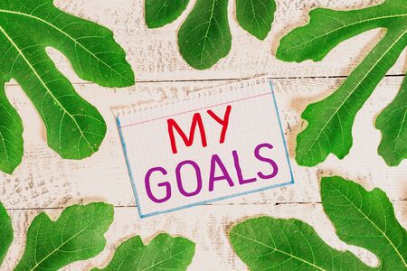 Text sign showing My Goals. Business photo showcasing Future or desired result that a demonstrating commits to achieve Stok Fotoğraf - 131365029