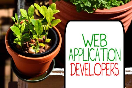 Writing note showing Web Application Developers. Business concept for Internet programming experts Technology software Plentiful plants on a small pot placed side by side with a large one