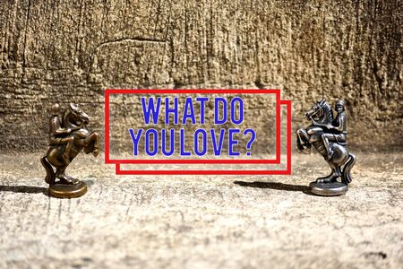 Text sign showing What Do You Love Question. Business photo showcasing Enjoyable things passion for something inspiration Two Bronze Chess Pieces Knights Facing Each Other in Focus and Defocused