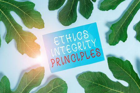 L'écriture de texte Word Principes d'intégrité éthique. Photo d'entreprise présentant la qualité d'être honnête et d'avoir une forte moralité