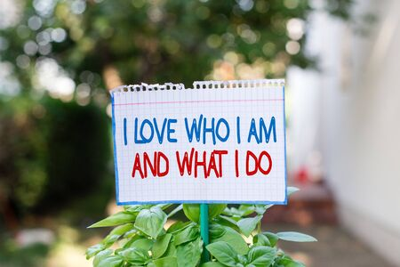 Word writing text I Love Who I Am And What I Do. Business photo showcasing High selfstem being comfortable with your job Plain empty paper attached to a stick and placed in the green leafy plants