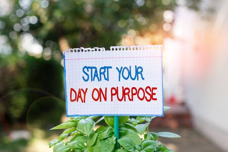 Word writing text Start Your Day On Purpose. Business photo showcasing Have clean ideas of what you are going to do Plain empty paper attached to a stick and placed in the green leafy plants