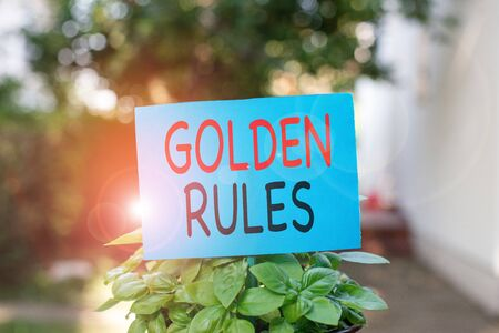 Writing note showing Golden Rules. Business concept for basic principle that should always follow to ensure success Plain paper attached to stick and placed in the grassy land Standard-Bild