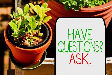 Writing note showing Have Questions Question Ask. Business concept for asking someone respond you with feedback Plentiful plants on a small pot placed side by side with a large one