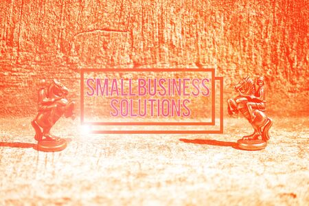 Text sign showing Small Business Solutions. Business photo showcasing a Company to solve Specific Trade problems Two Bronze Chess Pieces Knights Facing Each Other in Focus and Defocused