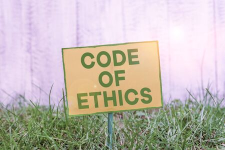 Handwriting text writing Code Of Ethics. Conceptual photo basic guide for professional conduct and imposes duties Plain empty paper attached to a stick and placed in the green grassy land