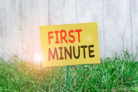 Writing note showing First Minute. Business concept for promotional offers last within a very short amount of time Plain paper attached to stick and placed in the grassy land