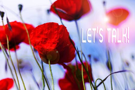 Writing note showing Let S Talk. Business concept for they are suggesting beginning conversation on specific topic Front view summer red color poppy flowers sky background