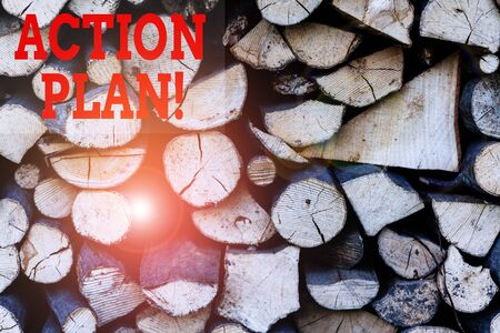 Text sign showing Action Plan. Business photo showcasing proposed strategy or course of actions for certain time Background dry chopped firewood logs stacked up in a pile winter chimney Stockfoto