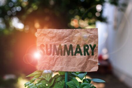 Word writing text Summary. Business photo showcasing a brief statement or account of the main points of something Plain empty paper attached to a stick and placed in the green leafy plants Banco de Imagens