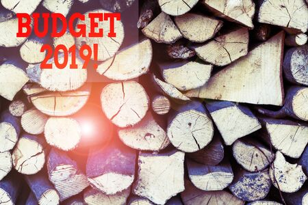 Text sign showing Budget 2019. Business photo showcasing estimate of income and expenditure for current year Background dry chopped firewood logs stacked up in a pile winter chimney