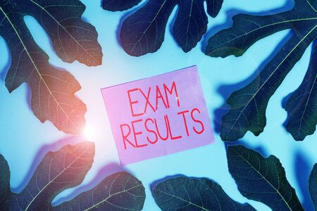 Handwriting text Exam Results. Conceptual photo An outcome of a formal test that shows knowledge or ability 写真素材 - 131879649