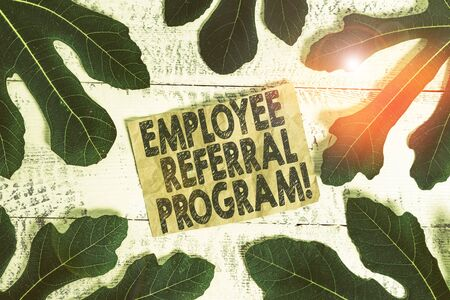 Word writing text Employee Referral Program. Business photo showcasing internal recruitment method employed by organizations