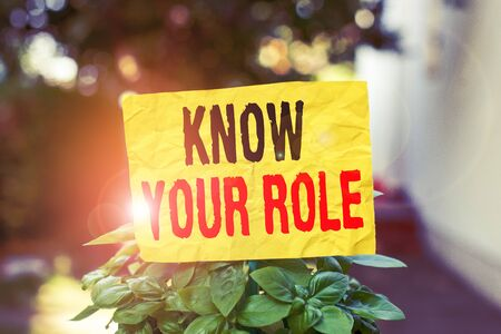 Word writing text Know Your Role. Business photo showcasing end acting outside who you actually are Play your position Plain empty paper attached to a stick and placed in the green leafy plants 스톡 콘텐츠