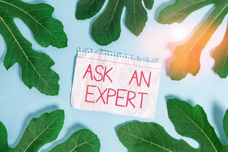 Writing note showing Ask An Expert. Business concept for consult someone who has skill about something or knowledgeable Leaves surrounding notepaper above empty soft pastel table Stockfoto