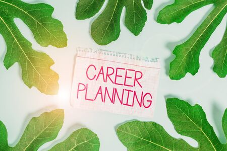 Writing note showing Career Planning. Business concept for Strategically plan your career goals and work success Leaves surrounding notepaper above empty soft pastel table