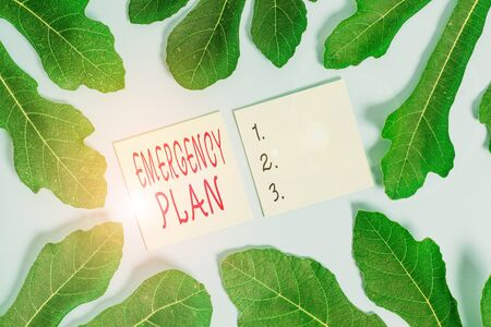 Word writing text Emergency Plan. Business photo showcasing procedures for handling sudden or unexpected situations Leaves surrounding notepaper above an empty soft pastel table as background