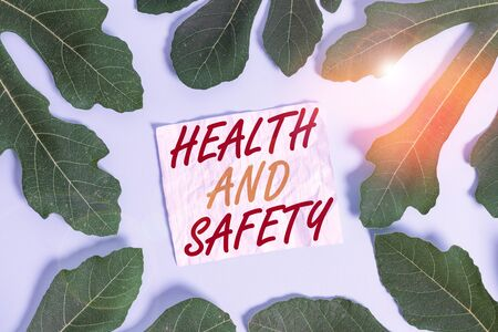 Text sign showing Health And Safety. Business photo text procedures intended to prevent accident in workplace Leaves surrounding notepaper above an empty soft pastel table as background 스톡 콘텐츠