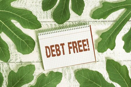 Conceptual hand writing showing Debt Free. Concept meaning does not owning any money to any individual or companies Leaves surrounding notepaper above a classic wooden table