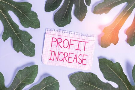 Writing note showing Profit Increase. Business concept for the growth in the amount of revenue gained from a business Leaves surrounding notepaper above empty soft pastel table