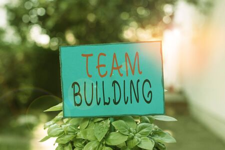 Text sign showing Team Building. Business photo text various types of activities used to enhance social relations Plain empty paper attached to a stick and placed in the green leafy plants Stock fotó