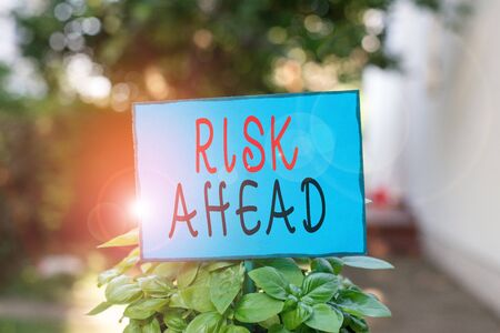 Text sign showing Risk Ahead. Business photo text A probability or threat of damage, injury, liability, loss Plain empty paper attached to a stick and placed in the green leafy plants Stock fotó