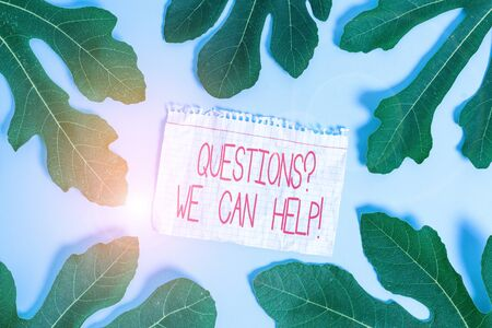 Writing note showing Questions We Can Help. Business concept for offering help to those who wants to know Leaves surrounding notepaper above empty soft pastel table