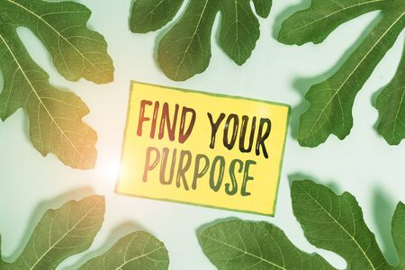 Handwriting text Find Your Purpose question. Conceptual photo reason for something is done or for which exists Leaves surrounding notepaper above an empty soft pastel table as background