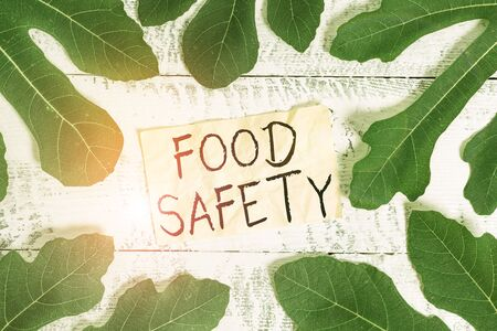 Conceptual hand writing showing Food Safety. Concept meaning conditions and practices that preserve the quality of food Leaves surrounding notepaper above a classic wooden table Stok Fotoğraf