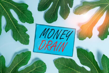 Writing note showing Money Drain. Business concept for To waste or squander money Spend money foolishly or carelessly Leaves surrounding notepaper above empty soft pastel table Stok Fotoğraf