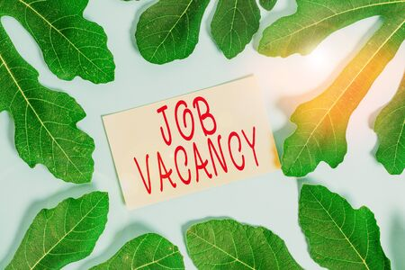 Writing note showing Job Vacancy. Business concept for job that no one is doing and available for someone to do Leaves surrounding notepaper above empty soft pastel table Stock Photo