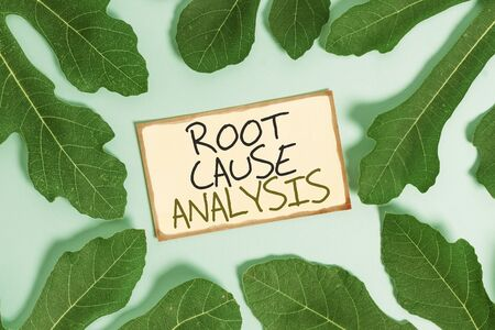 Text sign showing Root Cause Analysis. Business photo showcasing Method of Problem Solving Identify Fault or Problem Leaves surrounding notepaper above an empty soft pastel table as background