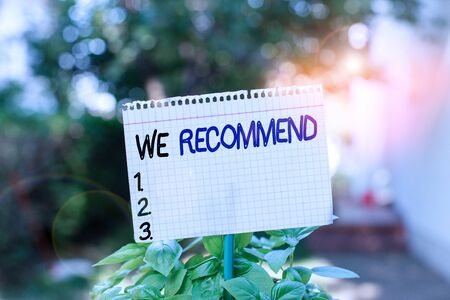 Text sign showing We Recommend. Business photo showcasing suggest that someone or something would be good or suitable Plain empty paper attached to a stick and placed in the green leafy plants